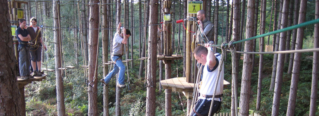 Photo of a tree top assault course with ropes